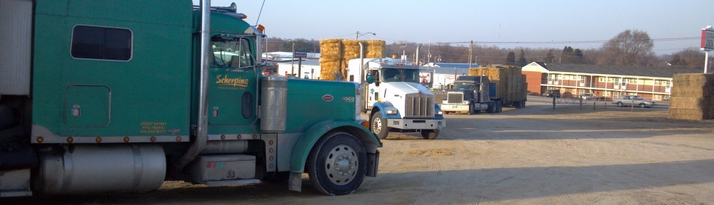 Dyersville Sales Co Hay And Cattle Auctions